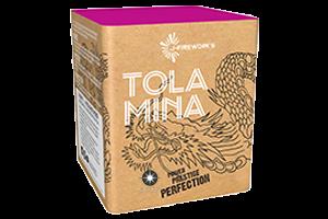 Tola Mina
